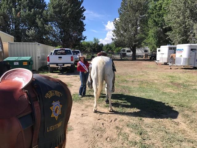 Mule Days 2019
